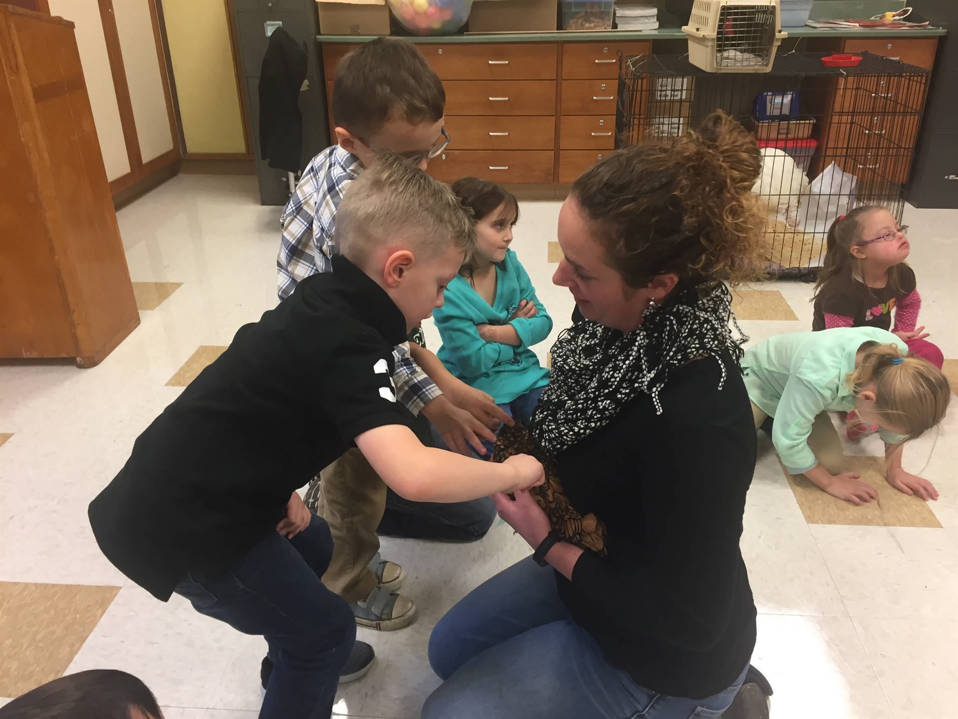 Ag in the classroom.... turkey and chickens visit
