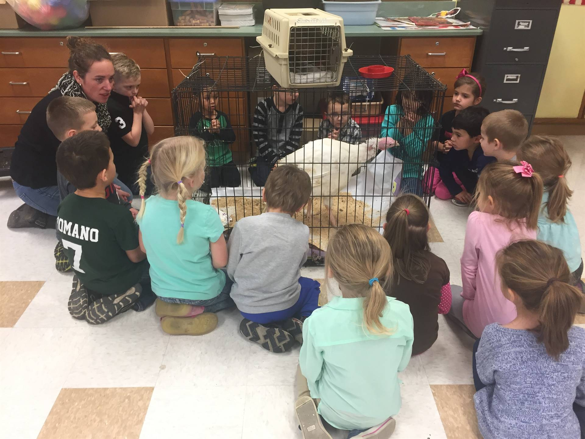 Ag in the classroom visit....