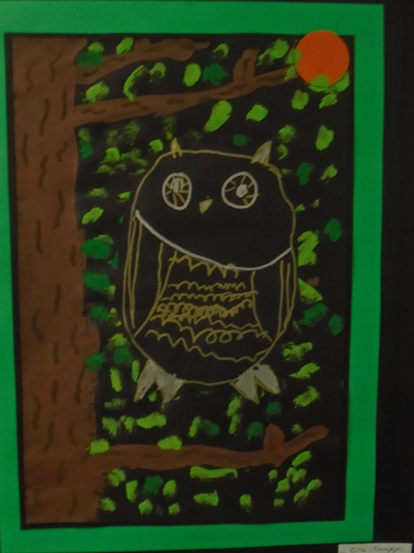 Owl Pastel Drawing