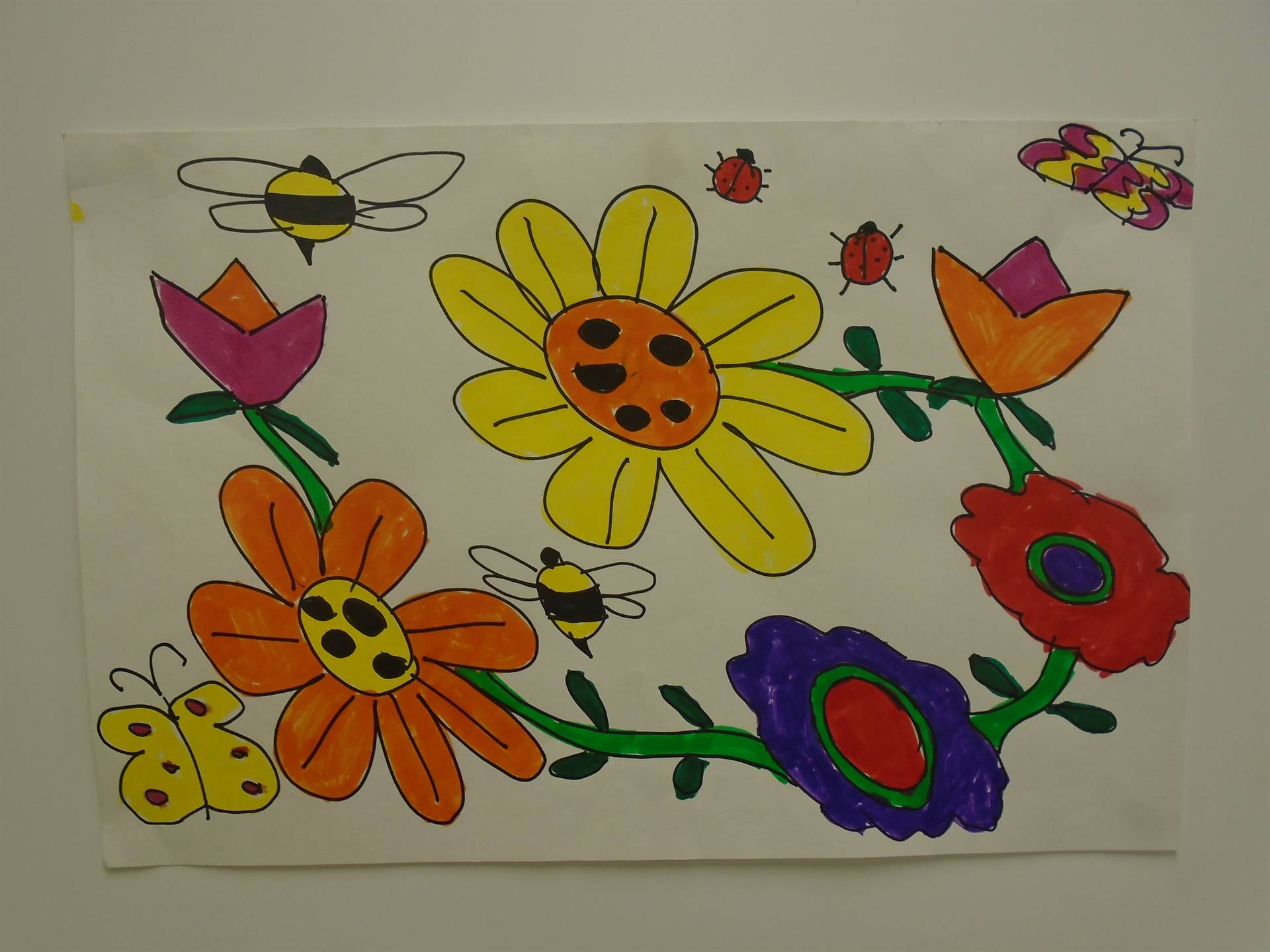 Colorful Flowers & Insects  Drawing