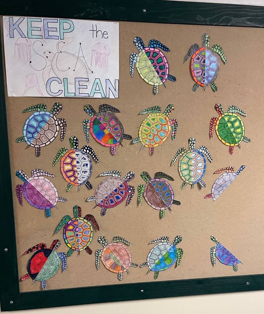 Photo of Turtles Created By Mrs. Dutcher's Class